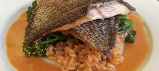 Pan Fried Black Bream with Roasted Tomato Risotto